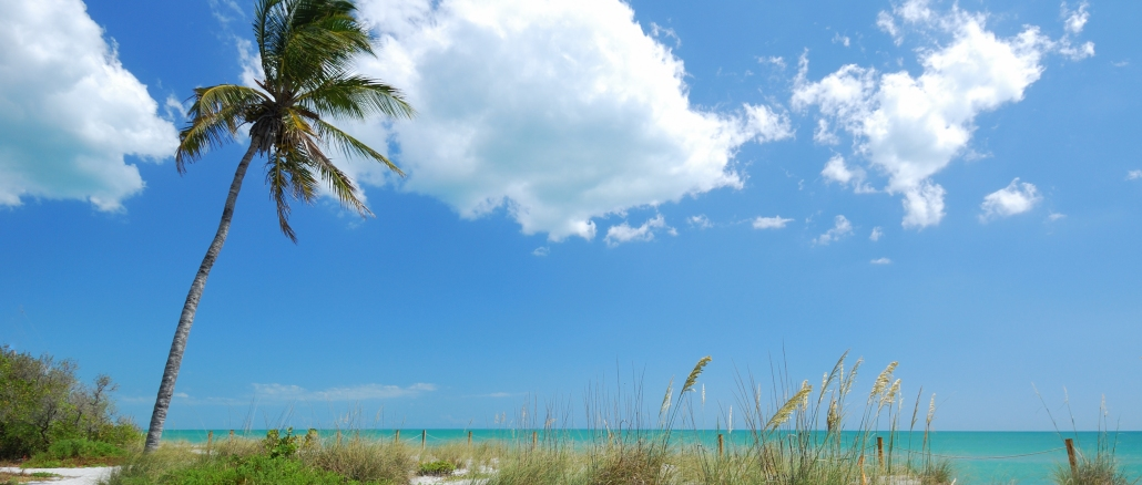 Publix Palm Beach Island