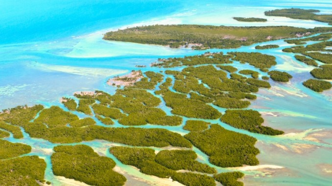 florida-keys-inseln