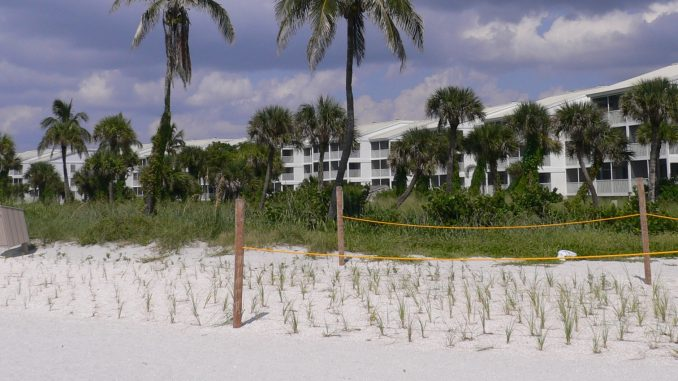 Der Strand Captiva Beach