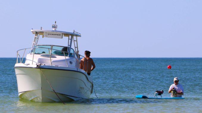 Dog Beach Fort Myers Beach